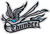 THUNDER THUNDERBIRD SM STICKER