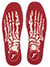 FOOTPRINT KINGFOAM FLAT 5MM SKELETON RED INSOLE 9/9.5